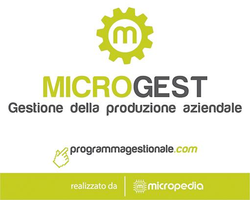 programma-gestionale-produzione